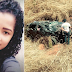 TRAGÉDIA: GRAVE ACIDENTE NA BR-135 DEIXA 3 PESSOAS MORTAS, VEÍCULO SEGUIA DE REMANSO-BA PARA GOIÂNIA