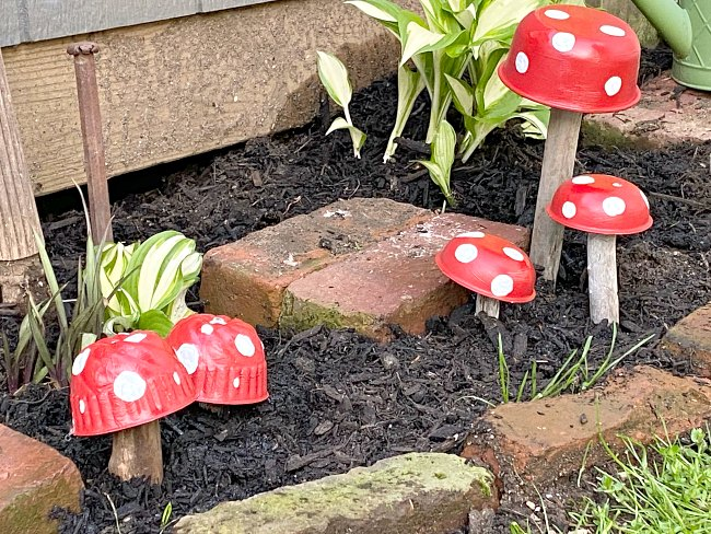 Red Garden mushrooms planted in the mulch in the garden