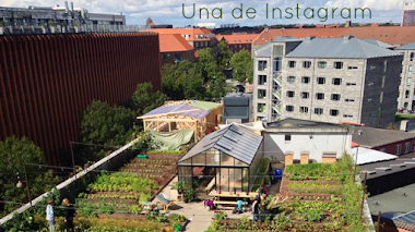 Una de Instagram: OpenGardenCph agricultura urbana