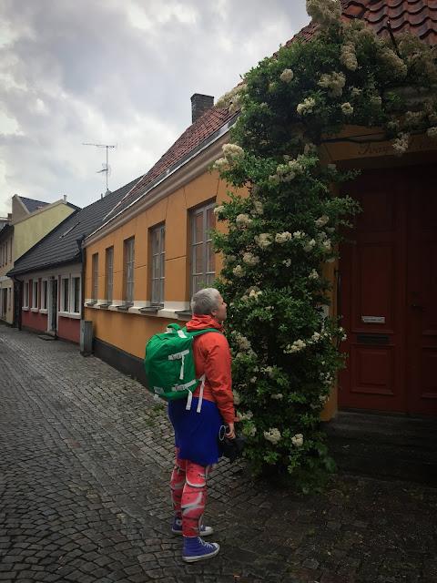 Ystad, Suedia