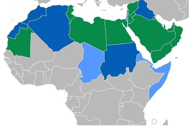 エジプト方言(アーンミーヤ)よりもフスハー(現代標準アラビア語)を先に学ぶべき理由