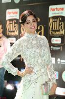 Poonam Kaur in Beautiful Floor Length Gown at IIFA Utsavam Awards 2017  Day 2  Exclusive 23.JPG