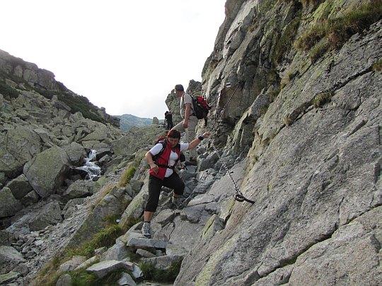 Półka skalna w Dolinie Staroleśnej