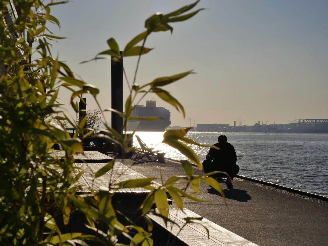 Schiffsverkehr Elbe