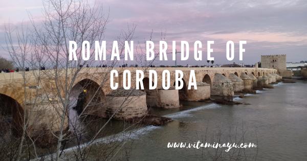 Travelog Cordoba : Roman Bridge of Cordoba