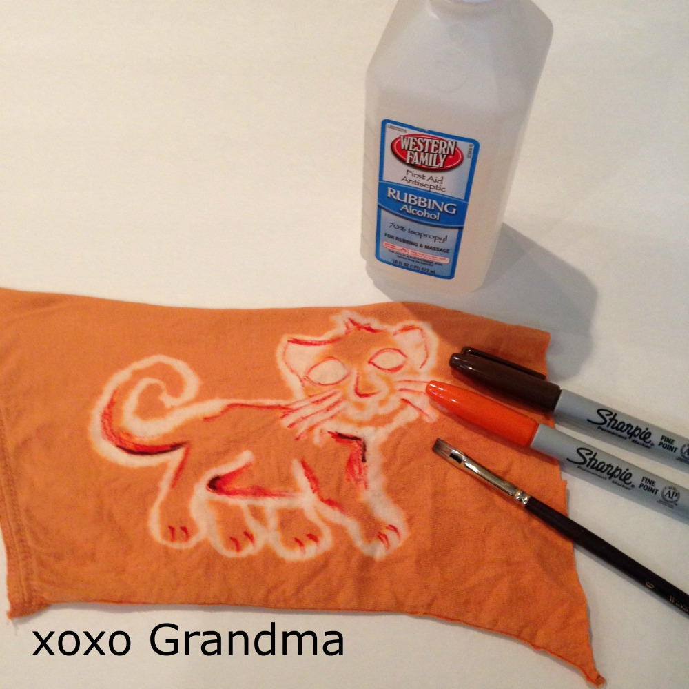 xoxo Grandma: Lions and Tigers and Bears - Oh My, What a