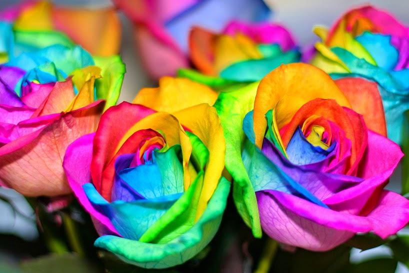 Background Warna Warni Pelangi Cantik Untuk Kalender 2014 Aspal Putih