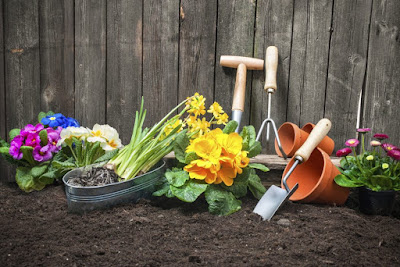 A collection of plants, pots and tools in preparation for planting.