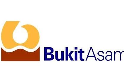 Lowongan Kerja Terbaru PT. Bukit Asam (Persero) Tbk, Tingkat SMK/Sederajat Batas Pendaftaran 2 Agustus 2019