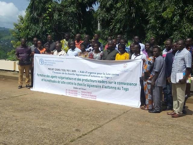 Atakpamé : Les agents de l'ICAT formés pour contrer la chenille légionnaire d'automne