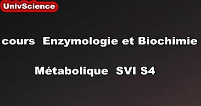 Cours De Enzymologie et Biochimie Métabolique SVI S4 PDF