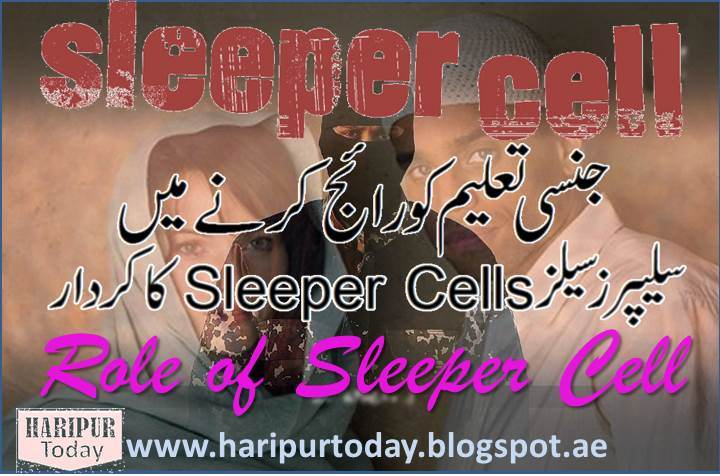 Sleeper Cells