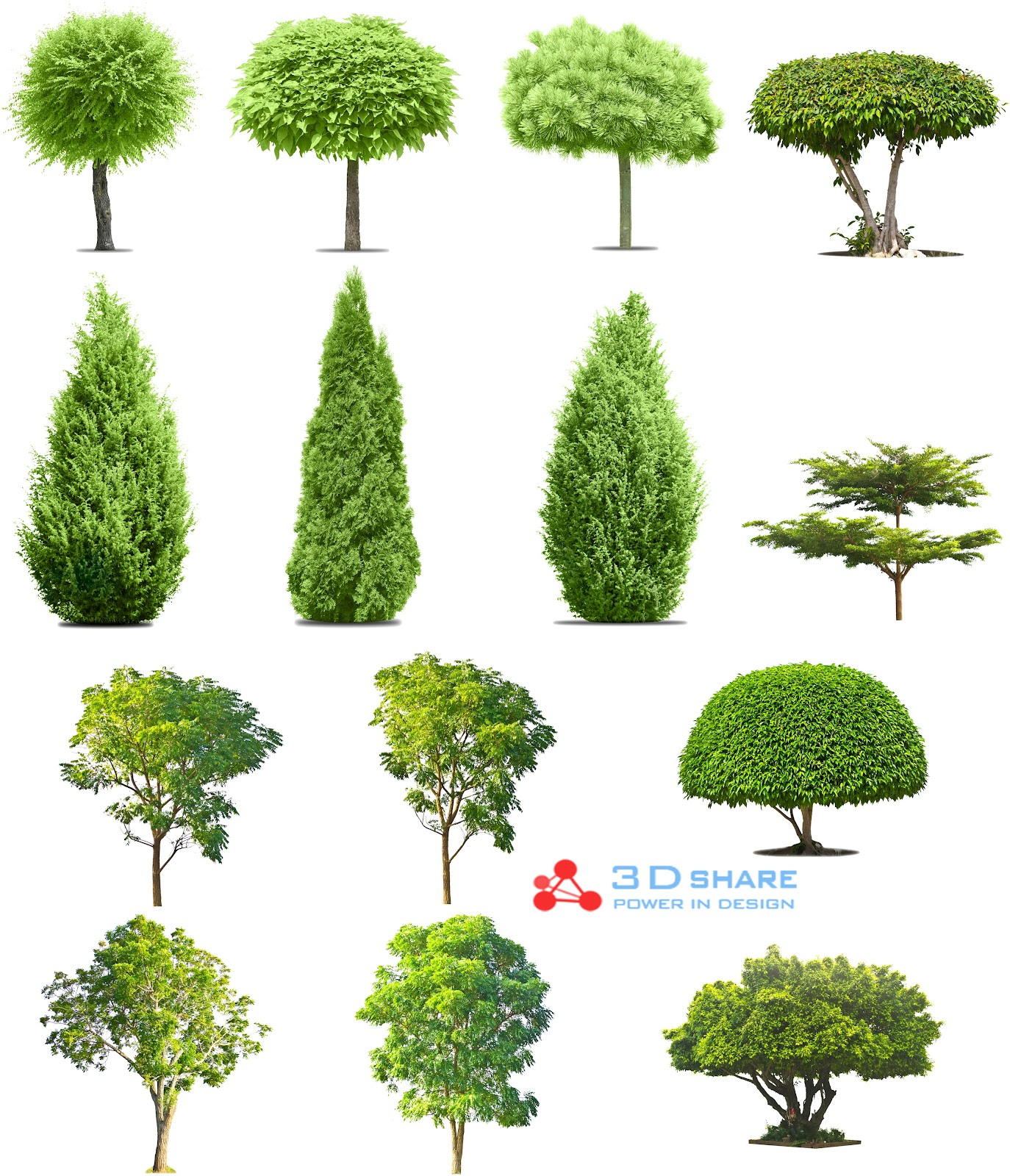 [photoshop][tree]