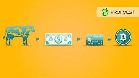 Новости рынка криптовалют за 04.02.21 – 11.02.21. Тесла купила биткоинов на 1,5 миллиарда долларов