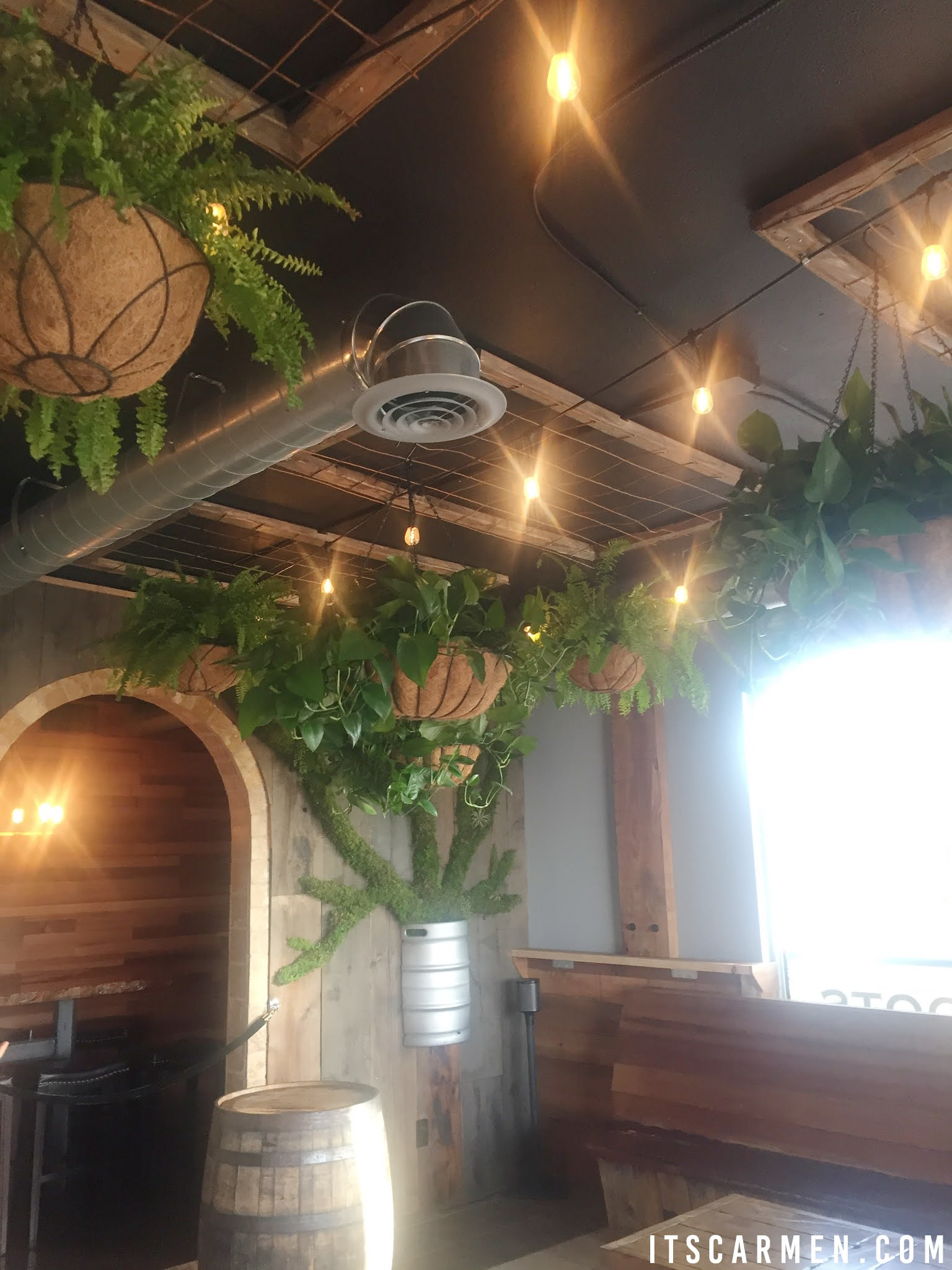 Bear Roots Brewing Downtown Vista Ca breweries