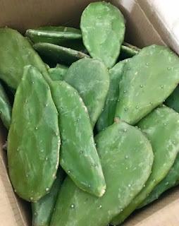 makanan-kaktus-centong.jpg