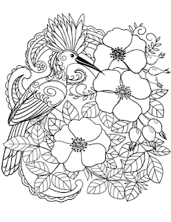 Cute Bird And Flower Coloring Pages
