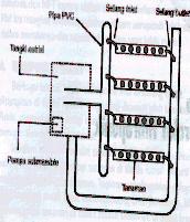 Gambar Hara pada Bak dialirkan dengan bantuan pompa masuk ke paralon berbentuk O. Dari paralon tersebut nutrien dialirkan ke talang penanaman dan melalui selang inlet akan mengalir dalam talang yang dibuat miring akan masuk kembali ke dalam paralon melalui selang outlet menuju tangki penampungan