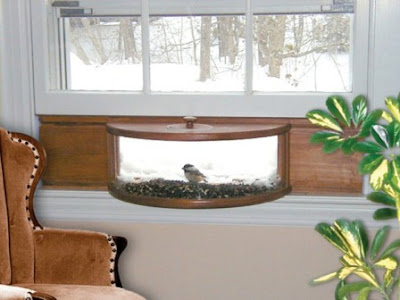 Coveside Conservation Products Panoramic Feeder w/Mirror – The Best Feeder for Close-up Viewing
