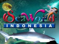 http://rekrutkerja.blogspot.com/2012/05/seaworld-indonesia-careers-may-2012-for.html