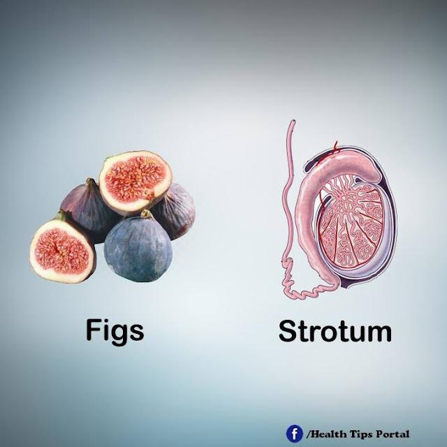 khasiat buah ara / figs