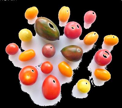 pretty multi coloured cherry tomatoes