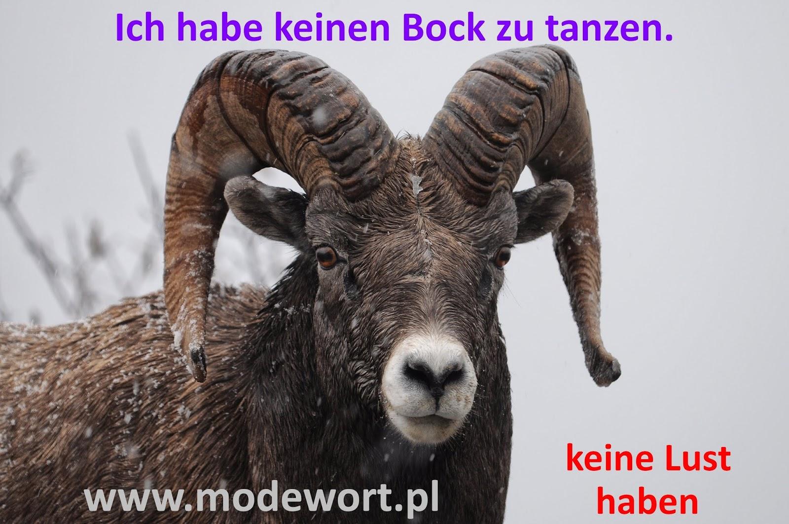 Modewort Jniemiecki Deutsch Als Fremdsprache Bild 1 Keinen Bock