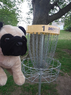 a plush pug appears next to a silver metal and yellow plastic disc golf course emblazoned with the number 1