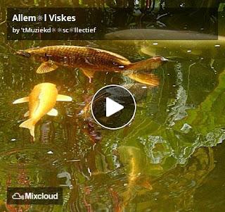 https://www.mixcloud.com/straatsalaat/alleml-viskes/