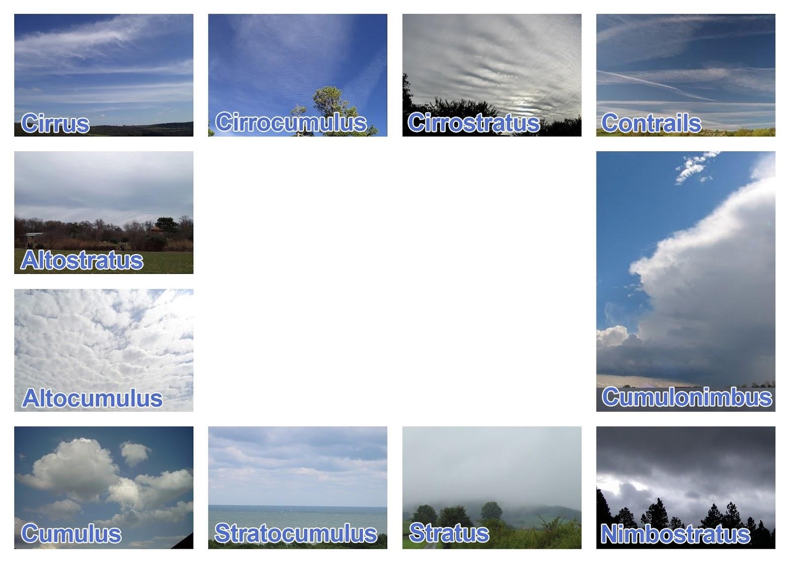 Head In The Clouds Cloud Identification Window