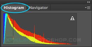 fungsi panel histogram photoshop