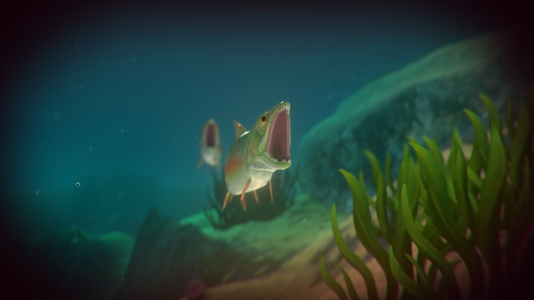 Free Download Feed and Grow: Fish