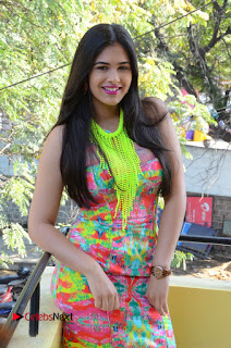 Telugu Actress Prasanna Stills in Short Dress at Inkenti Nuvve Cheppu Press Meet Stills  0063.JPG