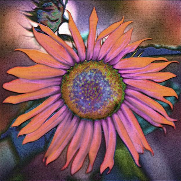 Spiritual Counseling, Flower Essence Aromatherapy, Art and ...