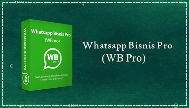 Aplikasi WhatsApp Bisnis Pro (WB Pro)