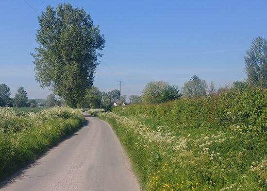 Common Lane heading SW towards Bluegates Farm