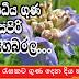 රෝග රැසකට ගුණ දෙන දිය හබරල (Habarala [Eichhornia Crassipes])