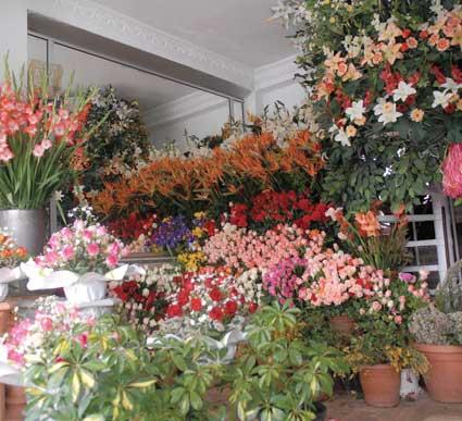 الربح السريع من مشروع تجارة الأزهار والورود
