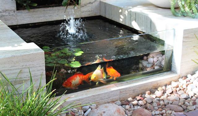 Desain Kolam Ikan Minimalis - Budidaya Ikan
