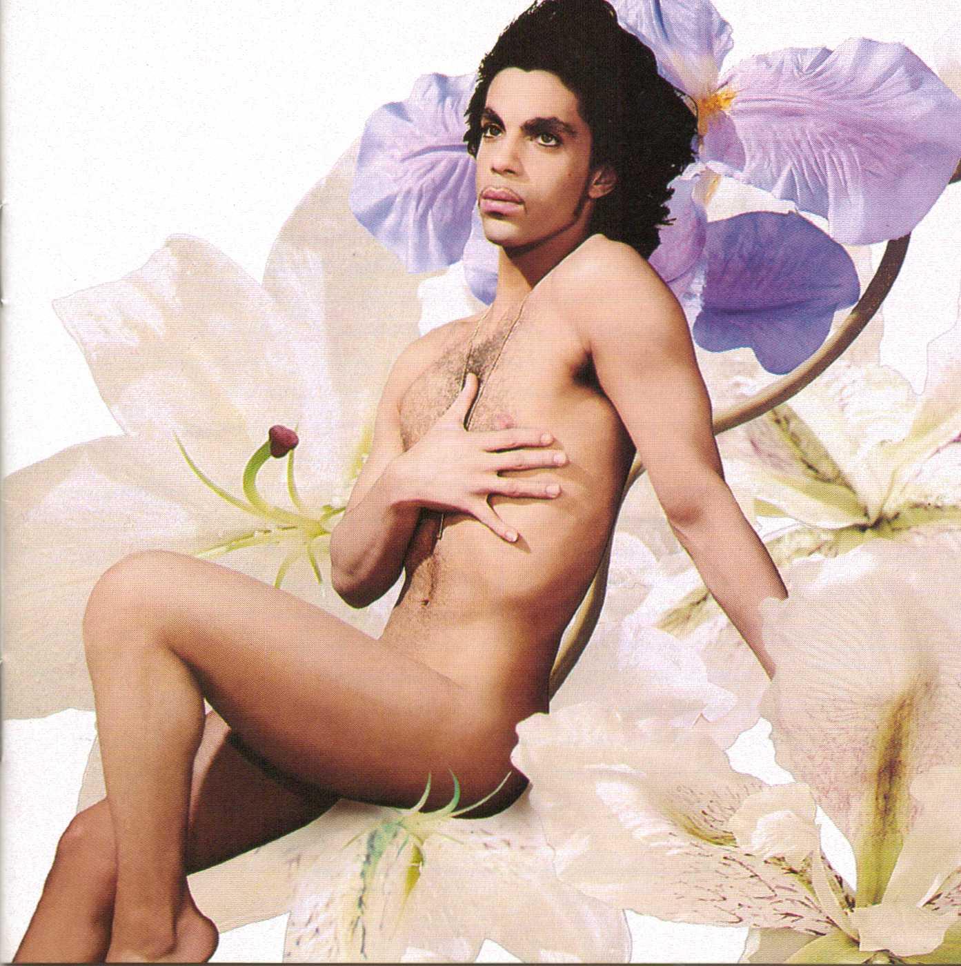 Big booty brazilian porn star