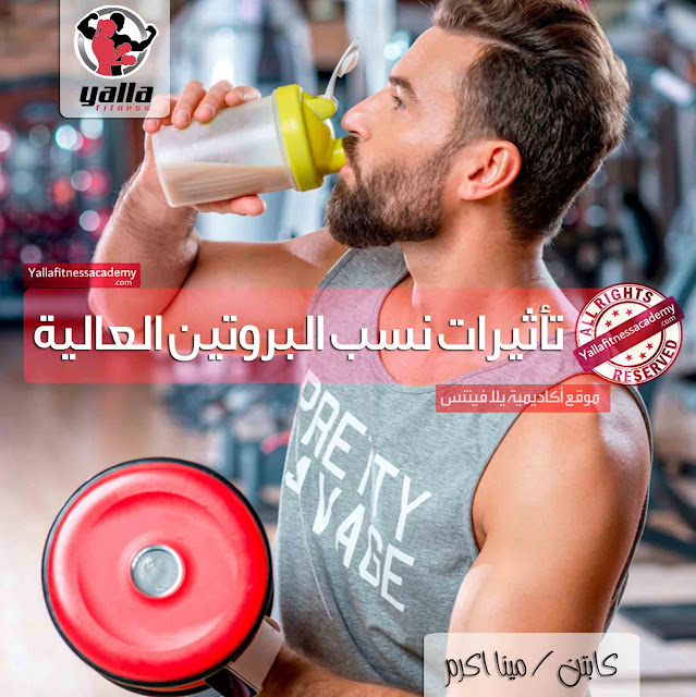 تأثيرات نسب البروتين العالية على الكلى و الكبد