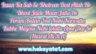 hazrat ali quotes urdu