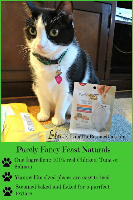 Fancy Feast|chewy.com