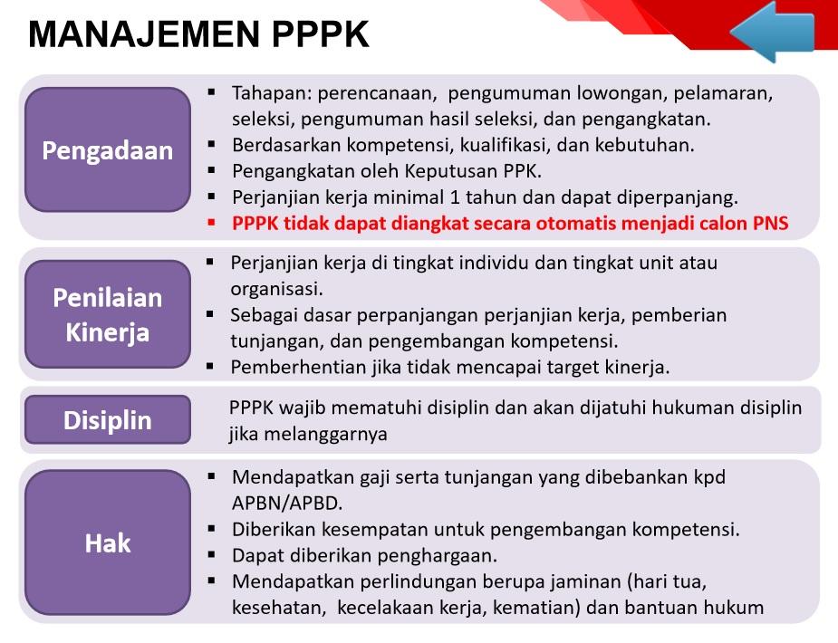 Manajemen PPPK