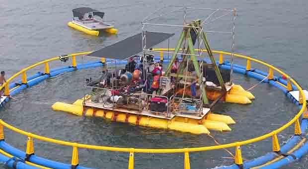Vietnam Tertarik Keunggulan KJA Offshore Submersibble