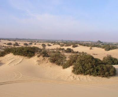 Sahara desert Egypt