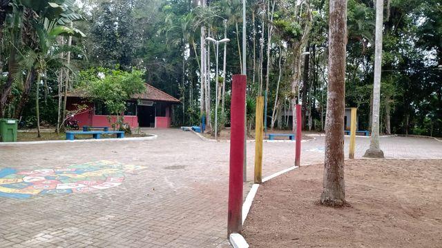 Registro-SP celebra Dia da Árvore com reabertura do Bosque Municipal