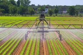 biologi dan pertanian