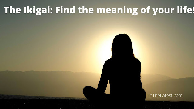 The Ikigai: Find the meaning of your life!...InTheLatest.com