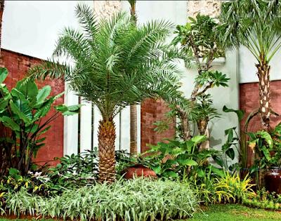 Tukang taman surabaya, desain taman surabaya